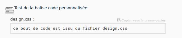 balise_code_personnalisee